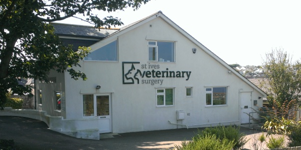 Front elevation of the new 	  building at St Ives Veterinary Surgery